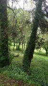 Venta de Terrenos en GUATEMALA, STA CATARINA PINULA