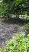 Venta de Terrenos en ESCUINTLA, MASAGUA