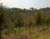 Venta de Terrenos en GUATEMALA, FRAIJANES